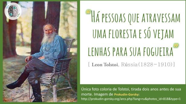 Leon Tolstoi - Floresta